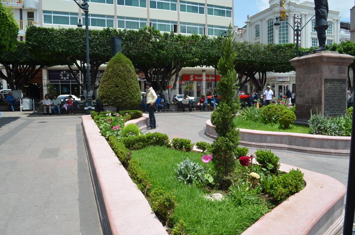 Remozan jardineras de la plaza principal de sahuayo el for Jardines pequenos para escuelas
