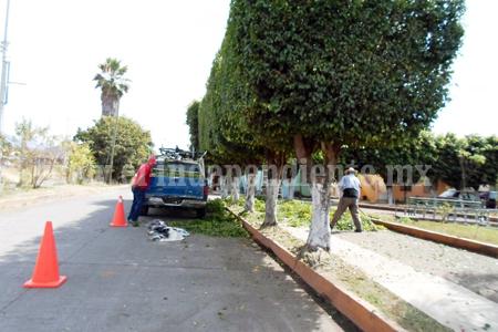 Parques y jardines da mantenimiento a la placita de san for Mantenimiento de parques y jardines