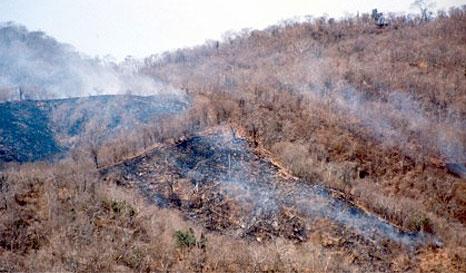 Agricultores serán capacitados para evitar quema de pastizales sin control