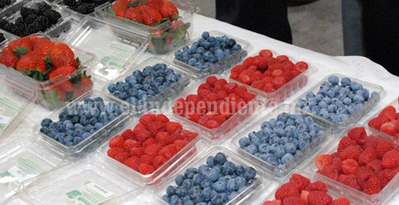Mercado ruso demanda berries mexicanas
