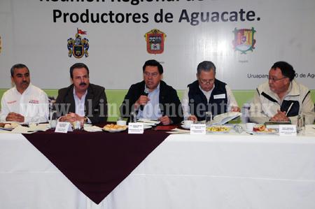 MICHOACÁN CONSOLIDADO COMO EL GRAN PRODUCTOR DE AGUACATE EN EL MUNDO