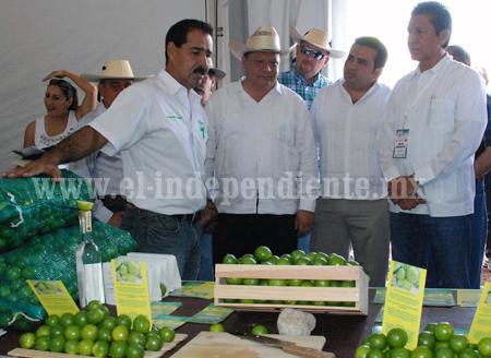 LIMÓN MICHOACANO SURTIRÁ A TODO MÉXICO