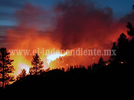 La tendencia de incendios forestales en el estado va a la alza