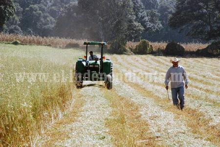 EXPIDE GOBERNADOR ACUERDO PARA DAR ASISTENCIA TÉCNICA A PRODUCTORES AGROPECUARIOS