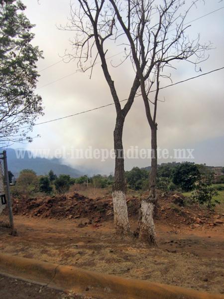 Deben agotarse líneas de investigación del incendio de la Chuparrosa en Tarecuato