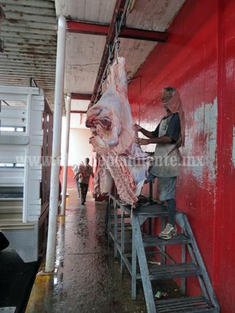 Detectan 2 reses tuberculosas en Rastro Municipal
