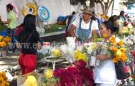 A partir de hoy comienza el repunte de venta de flores por Día de Muertos