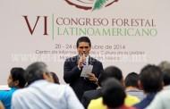 Hemos llegado al límite de la subsistencia por no cuidar nuestros bosques: Silvano