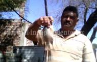Incrementa producción de pesca en el Lago de Chapala