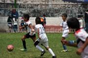 Escuela Municipal derrotó al Olimpia por 14-1