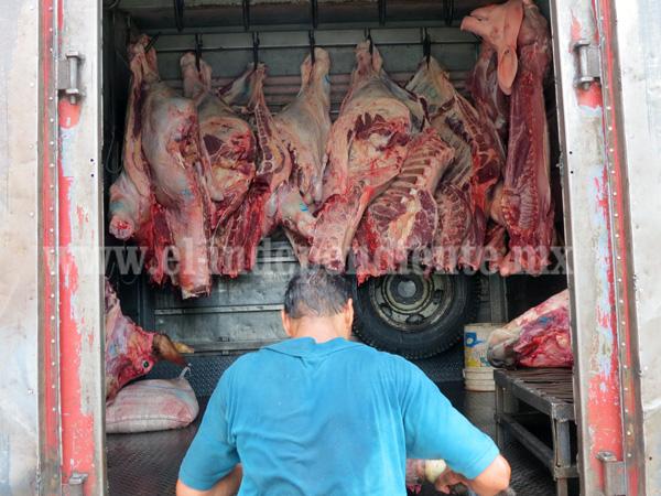 Importación de carne de cerdo afecta precio del cerdo mexicano