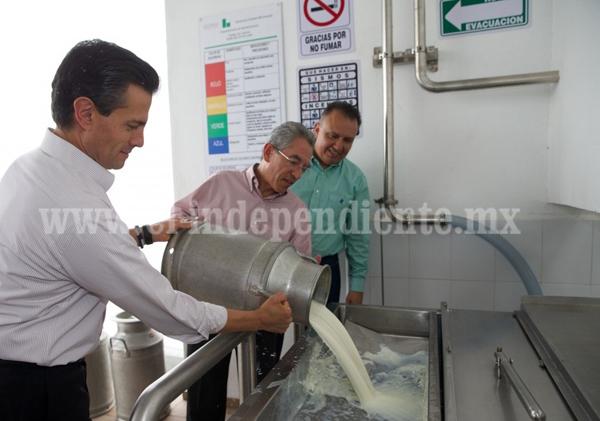 Récordde producción con leche fresca en Liconsa Michoacán