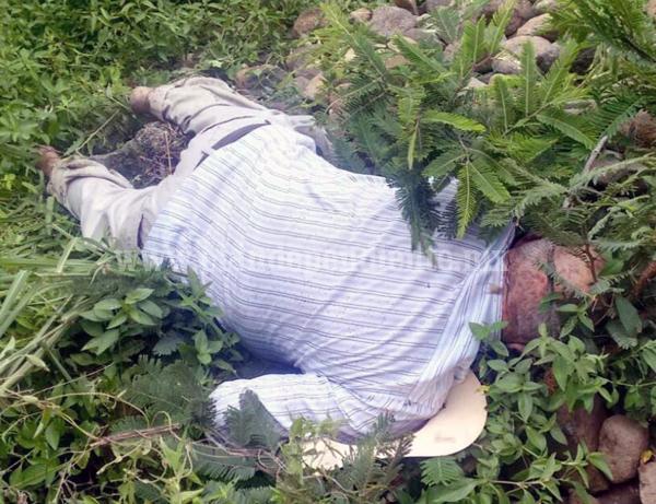 Anciano es hallado muerto, fue picado por las abejas