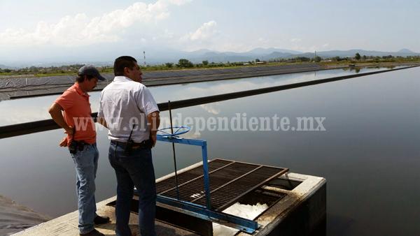 Supervisan operación de planta tratadora de agua