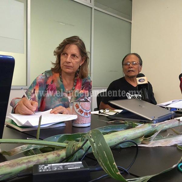 México es autosuficiente en la producción del maíz blanco