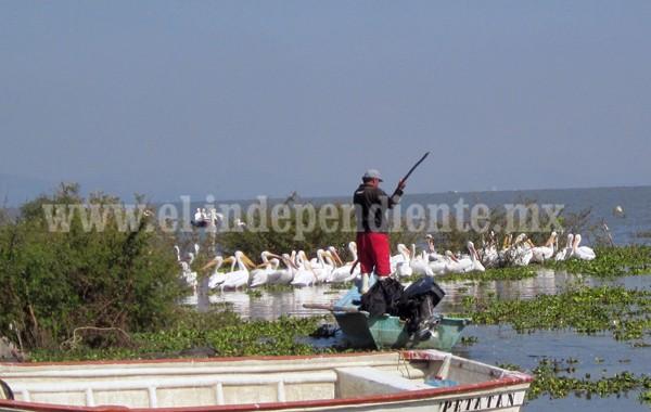 Demandan pescadores incremento en precio de compra de pescado