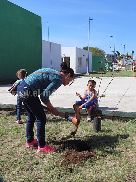 Plantarán 16 mil árboles en zona urbana para incrementar pulmones verdes