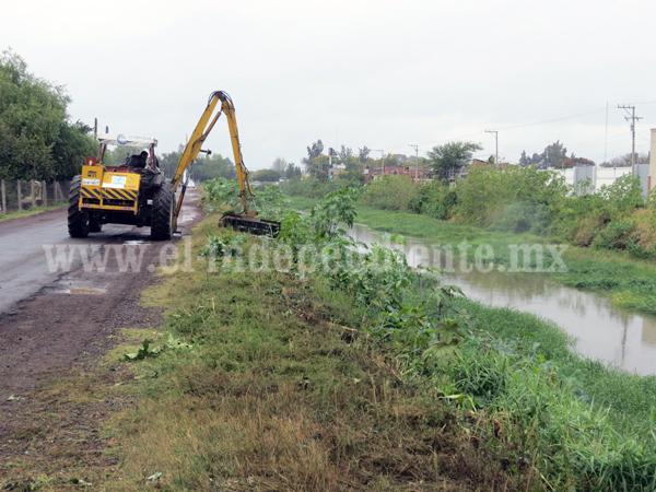 Falta de saneamiento del Río Duero impide el incremento del cultivo de fresa