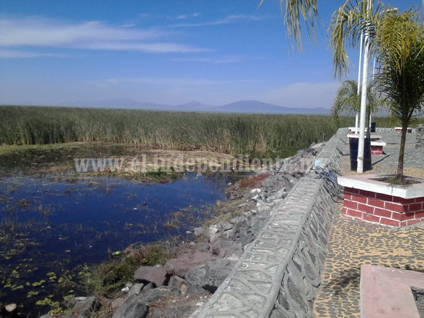 Piden frenar invasiones al Lago de Chapala