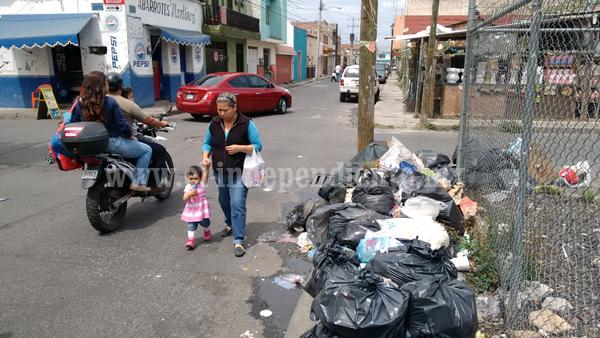Falta de vehículos para Aseo Público afecta recolección de basura