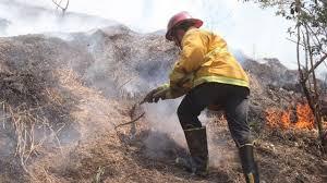 Atiende PC incendio forestal en Uruapan