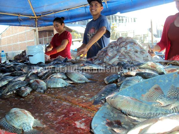 Se desploma precio del pescado por falta de demanda