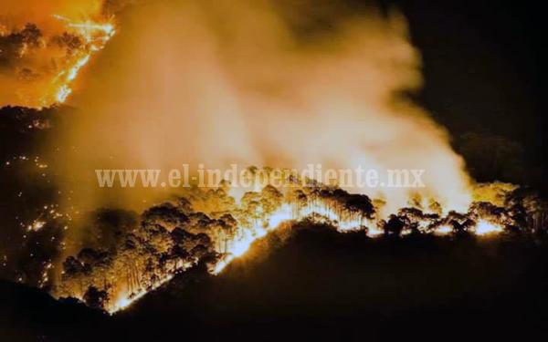 Piden sanciones y veto de uso de suelo a quienes quemen de manera intencional áreas verdes