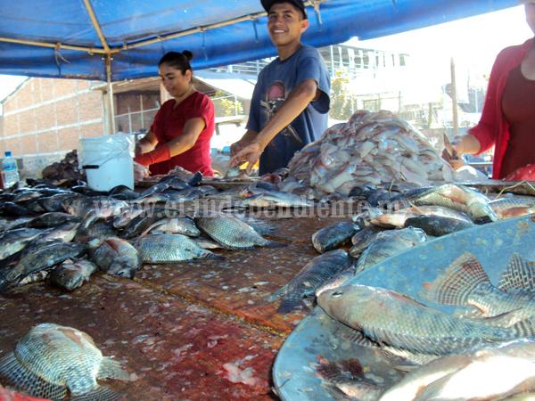 Determinan pescadores cancelar proyecto productivo por desvío de recursos