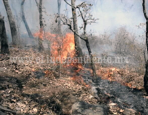 Después de 4 días de trabajo lograron extinguir el fuego en Los Cerros Cuates