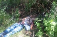 Encuentran cadáver de un hombre baleado en predio de Zamora