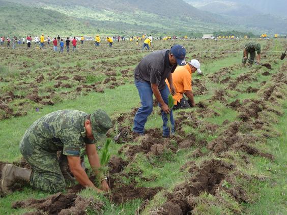 Lista, la Campaña Estatal de Reforestación 2016