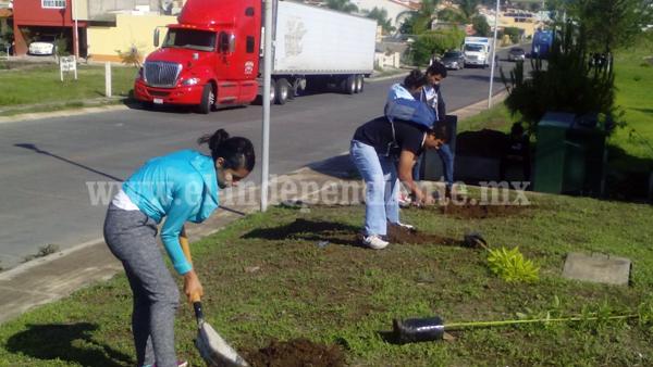 Jóvenes impulsan iniciativa de reforestación con apoyo del ayuntamiento