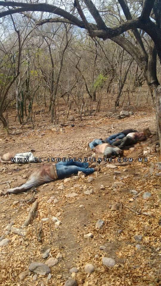 Decapitan a 7 en la Sierra de Rosario, Sinaloa