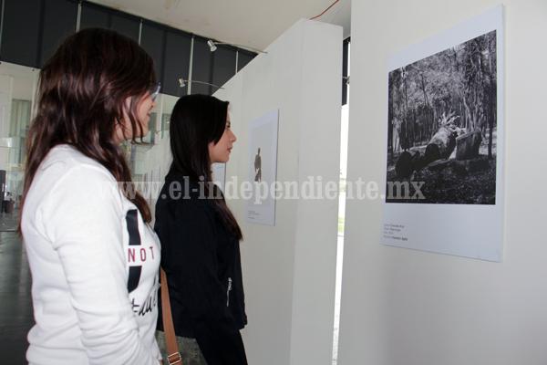"""Las exposición """"50 años de Farabeuf"""" de Salvador Elizondo"""" llegó a Zamora"""