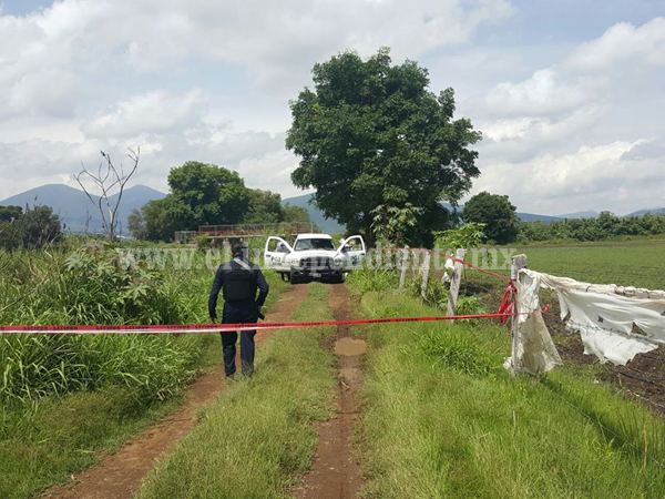 """Encuentran cadáver putrefacto en """"Los Espinos"""" de Zamora"""