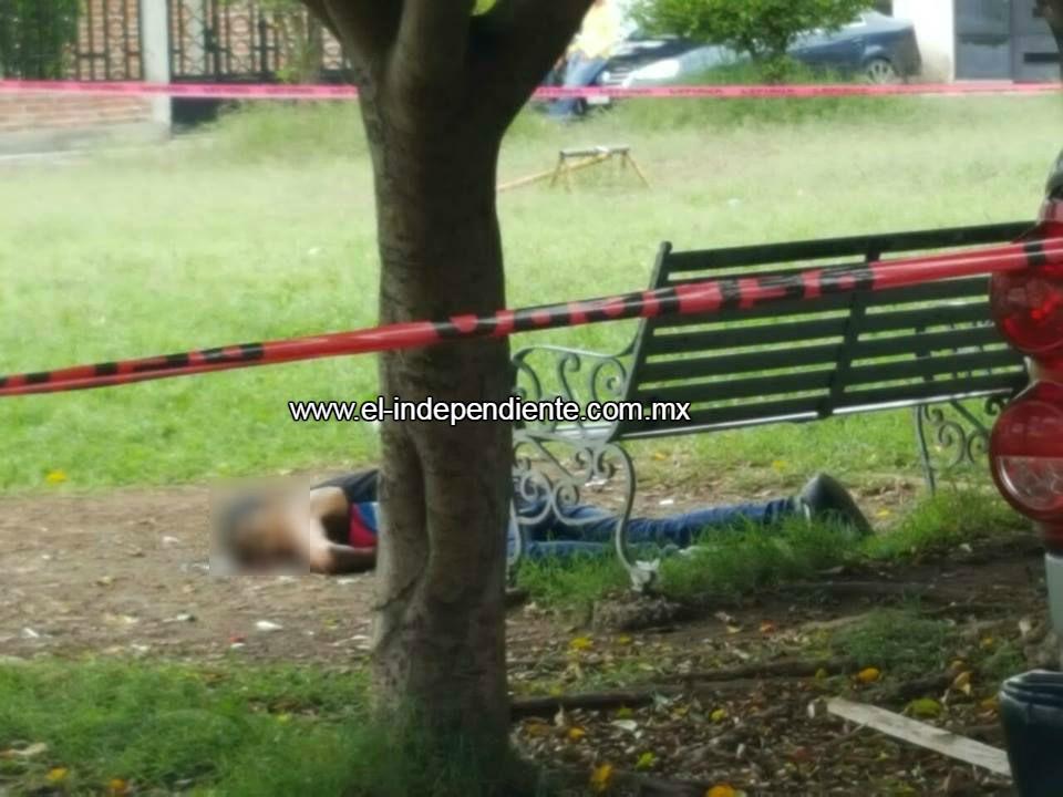 Motociclistas armados ultiman a adolescente en parque de Zamora.