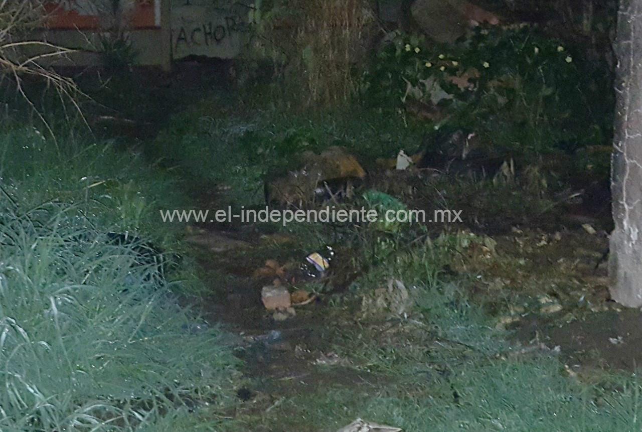 Localizan torso humano en la colonia Linda Vista de Zamora