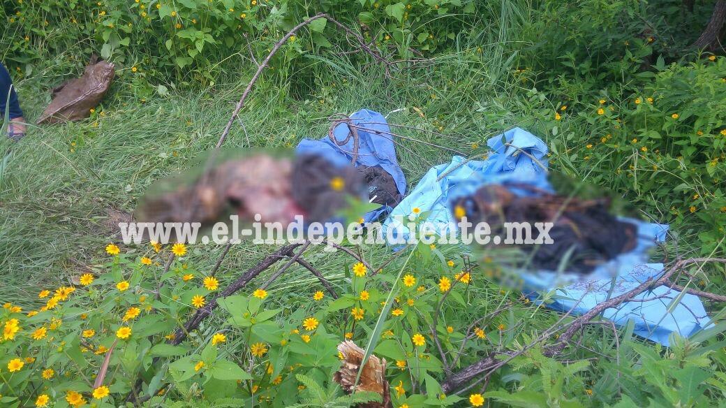 Encuentran 2 cadáveres en fosa clandestina dentro de una Noria de Jacona
