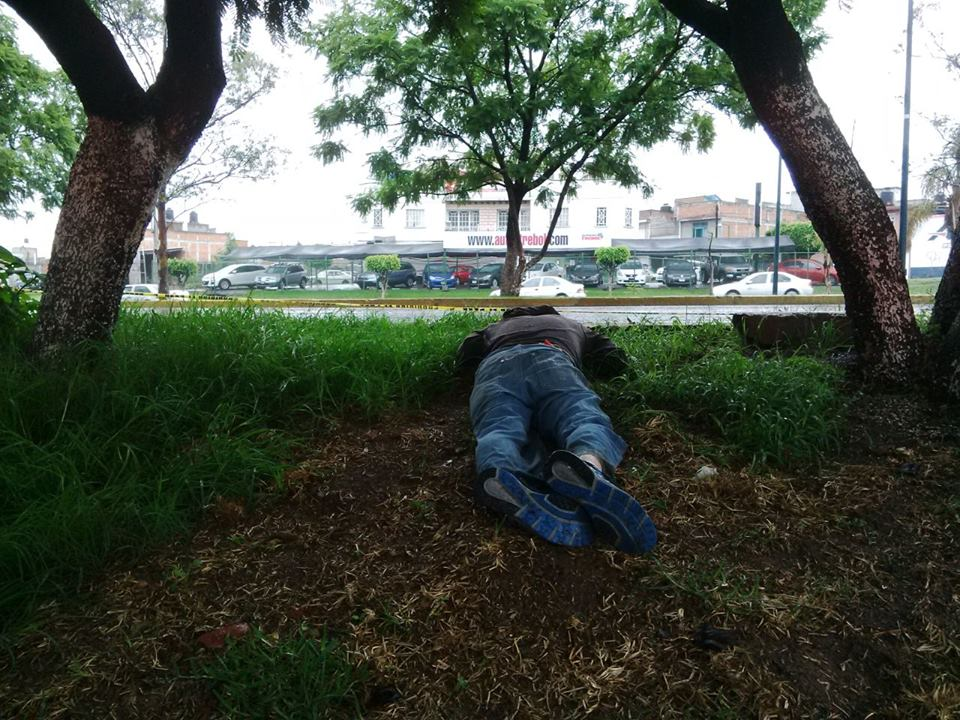 Localizan el cadáver de un hombre joven en un camellón del Periférico Revolución
