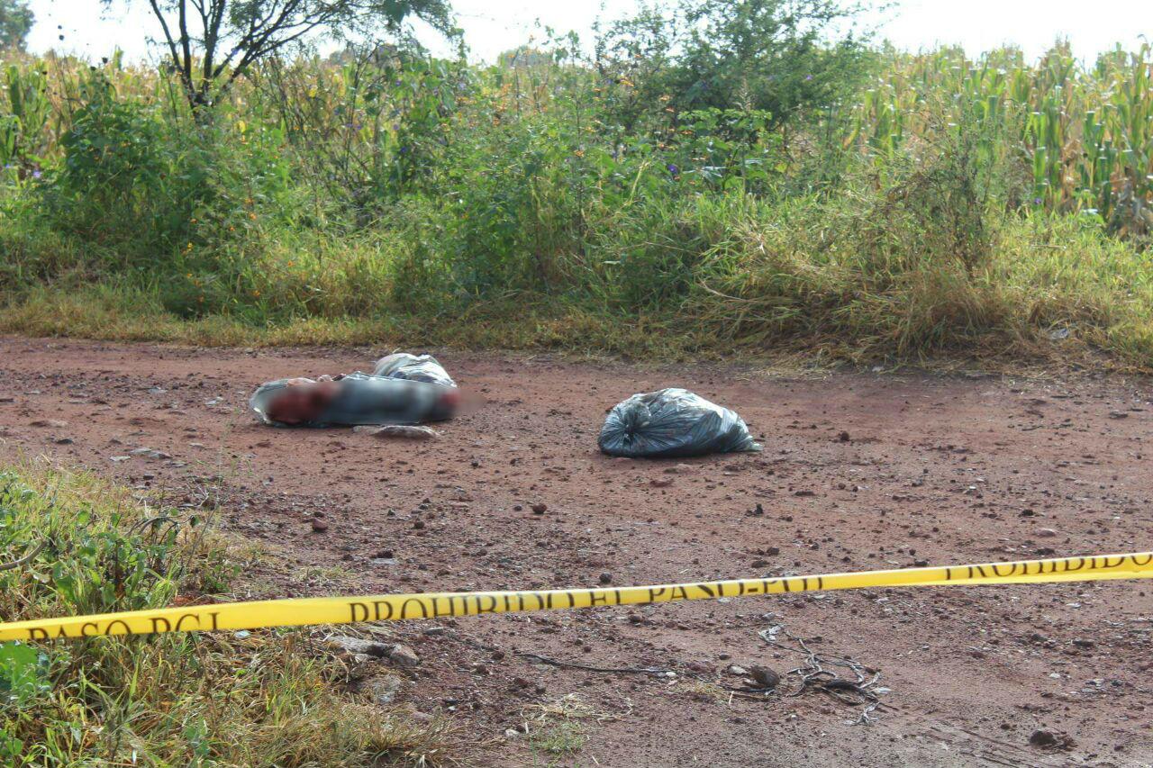 """Abandonan 3 bolsas con restos humanos en el camino a """"La Estación La Piedad"""""""