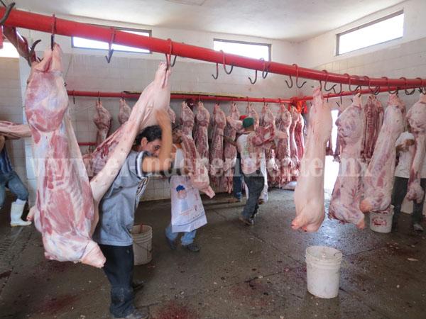 Aumentó sacrificio de cerdos en Rastro Municipal