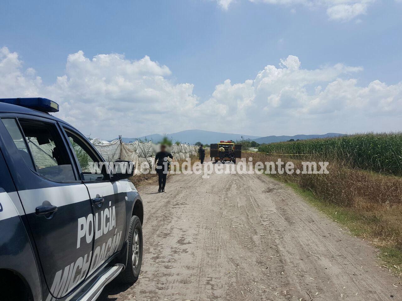 Motociclistas asesinan a balazos a un hombre en La Rinconada de Zamora