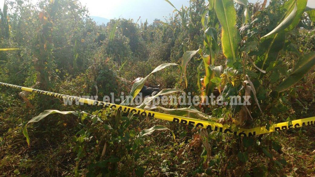 Campesinos encuentran cadáver putrefacto en parcelas de Zamora