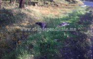 Localizan cadáver embolsado en Purépero