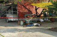 Campesino es ultimado a balazos en El Capricho de Zamora
