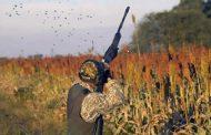 Impartirán curso sobre instrucción de caza deportiva y manejo de armas, obligatorio para licencia de cacería