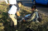 Trabajador es embestido por un taxi que se dio a la fuga en la Zamora - Tangancícuaro