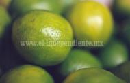 Buscará Sedeco diversificar las exportaciones de productos michoacanos