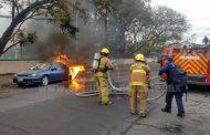 Se incendia auto en Zamora