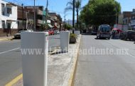 Gastan casi 700 mil pesos en maceteros para camellón de Avenida Juárez
